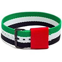 Momentum 20 mm Gold Plated Buckle, UAE Flag Natostrap