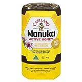 Capilano Active Honey, Manuka, 375g