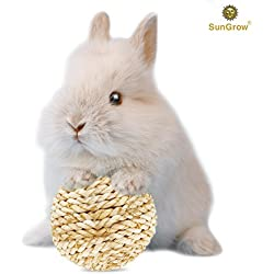 Grass ball for Rabbits --- Chew toy for nudging, nibbling - Toss toy alleviates boredom - Play ball prevents destructive behavior - Edible, Improves Critter Dental Health - Molar & Teeth Grinding ball