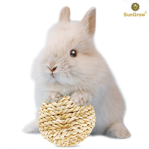 Grass Ball for Rabbits --- Molar & Teeth Grinding Ball - Play Ball Prevents Destructive Behavior - Chew Toy for Nudging, Nibbling - Toss Toy Alleviates Boredom - Edible, Improves Critter Dental Health ()