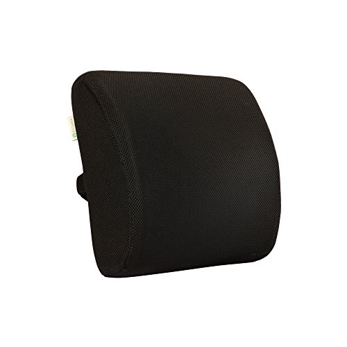 Acanva Memory Foam Back Pillow, Lumbar Support Seat Chair...