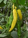 JustSeed - Pepper (Chilli) - Hot Lemon - 10 Seeds - Tasty