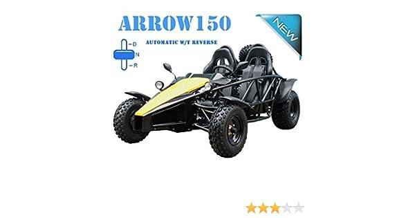 Amazon com: TAO TAO Brand ARROW 150cc FULL SIZE GOKART with