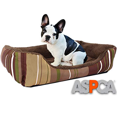 ASPCA Microtech Dog Bed, for Small to Medium Pets, Brown (Bed Sasha)