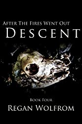 After The Fires Went Out: Descent