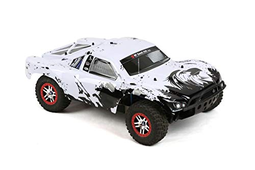 SummitLink Compatible Custom Body Eagle Style Replacement for 1/10 Scale RC Car or Truck (Truck not Included) SS-EAG-02