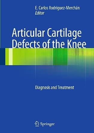 articular cartilage defect