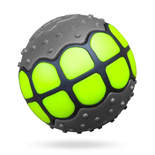 Dawg Grillz Dog Balls Toys Squeaky Fetch - Rubber Funny Ball Gifts for Large Medium Dogs (Gray Green) ()