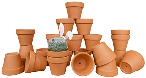 My Urban Crafts 24 Pcs Small Terra Cotta Pots 2.5