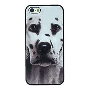 Dalmatian Dog Pattern PC Hard Back Cover Case for iPhone 5/5S Diys's Case