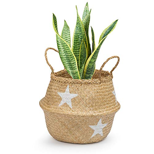Seagrass Round Basket with Handles, Decorative Woven Basket, Plant Holder, Picnic Basket or Indoor Storage for Blankets, Toys or Laundry, by Toma Design (White -Star, Medium)