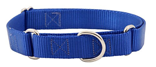 Country Brook Design 1 1/2 Inch Martingale Large Heavyduty Royal Blue Nylon Dog Collars
