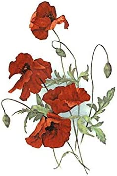 Red Field Poppy Flowers S3099 Waterslide Ceramic Decals by The Sheet Size A 8 pcs 5-1//2 X 3-1//2