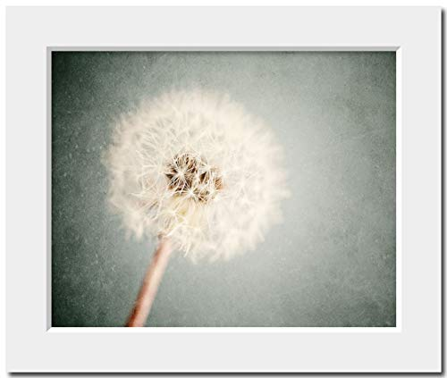 Shabby Chic Dandelion Art Matted 8x10