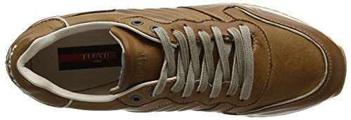 Uomo Sneaker Edico Lloyd 2 Marrone Nature new aE65Agx