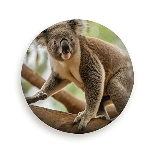 NGuns Koala on Eucalyptus Tree Queensland Australia Cover with Elastic Hem-Durable Design Keeps Dirt, Rain, and Sun Away from Your Spare Tire 15 Inch