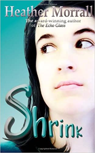 The Echo Glass A Novel about Anorexia Nervosa