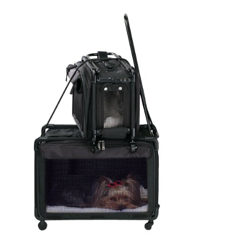 Tutto Medium Pet on Wheels Stroller, 20-Inch, Black by Tutto