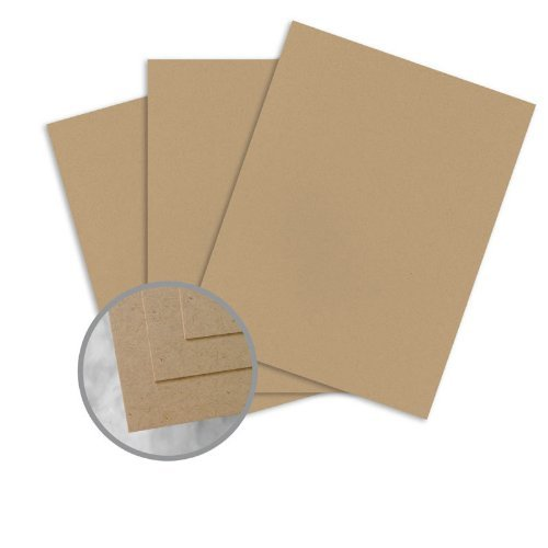 ENVIRONMENT Desert Storm Card Stock - 8 1/2 x 11 in 80 lb Cover Smooth 100% Recycled 250 per (Environment 80 Lb Cover)