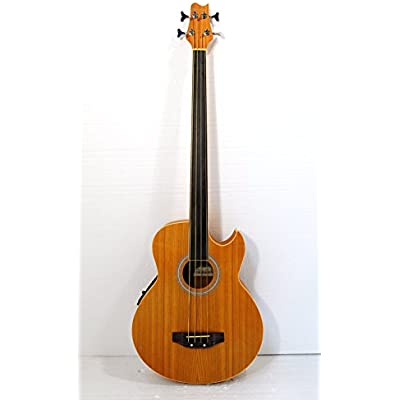 fretless-4-string-acoustic-electric