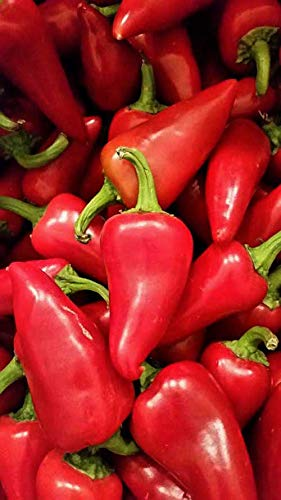 Fresh Red Fresno Chile Peppers 2 - Pepper Jalapeno Chile