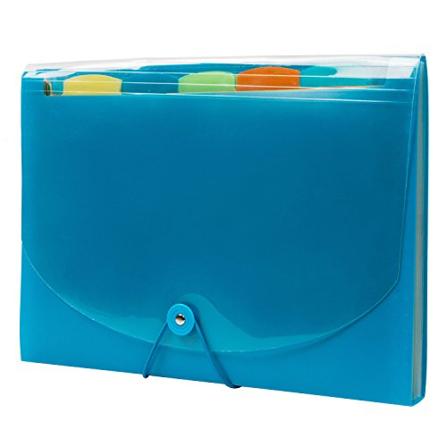 expandable-portable-hand-held-accordion-file-document-folder-cute-student-file-organizer-a4-and-lett