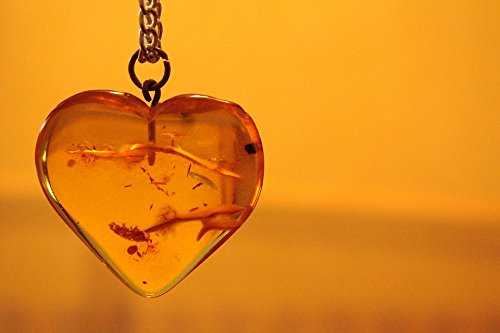 (Home Comforts Acrylic Face Mounted Prints Necklace Jewelry Pendant Amber Orange Heart Print 24 x 36. Worry Free Wall Installation - Shadow Mount is)