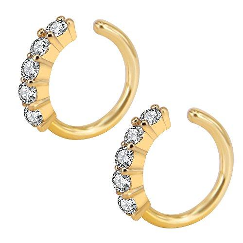 Gem Nose Hoop - 2PCS 16g Surgical Steel Sparkly Cubic Zirconia Gems Nose Hoop Ring Septum HelixDaith Cartilage Piercing (2pcs Gold)