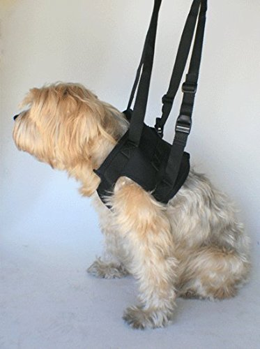Small  Chest 16-20\ Nooby's Dog Mobility Lift Support Harness 6 Sizes  Front Small Recover Aid for Older, Disabled or Injured Male & Female Dogs. Best Alternative to a Dog Support Sling and Dog Wheelchair.