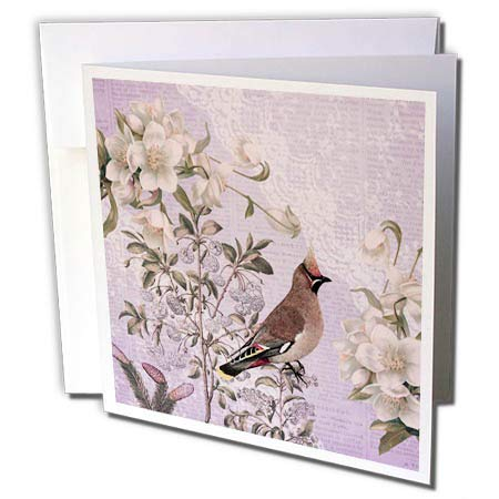 3dRose Andrea Haase Art Illustration - Vintage Bird and Flower Illustration in Soft Pastel Colors - 1 Greeting Card with Envelope (gc_289349_5) (1 Pastel Soft)