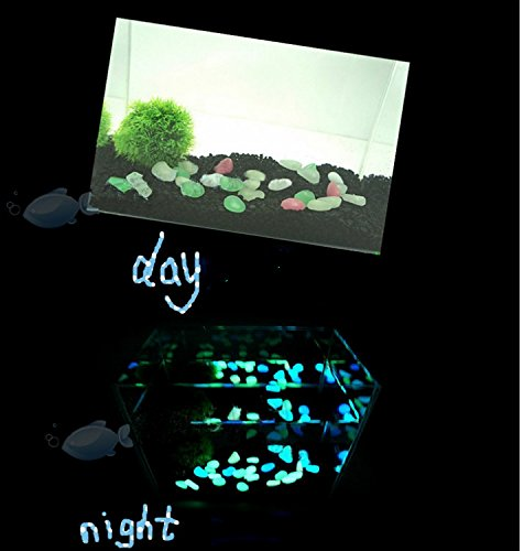 REKYO Decorative Gravel Garden or Yard 100 Glow in the Dark Sky Blue Noctilucent Pebbles Stones for Walkway Park Ornaments 20pcs
