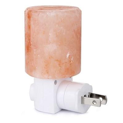 INVESCH Natural Crystal Himalayan Salt Lamp Novelty Night Lights Salt Light Unique Plug In Wall Light