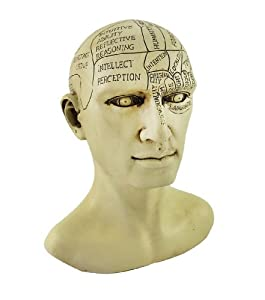Creepy Cast Resin Phrenology Head Victorian Steampunk