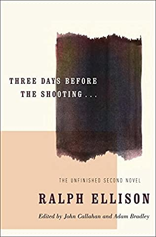 book cover of Three Days Before the Shooting . . .