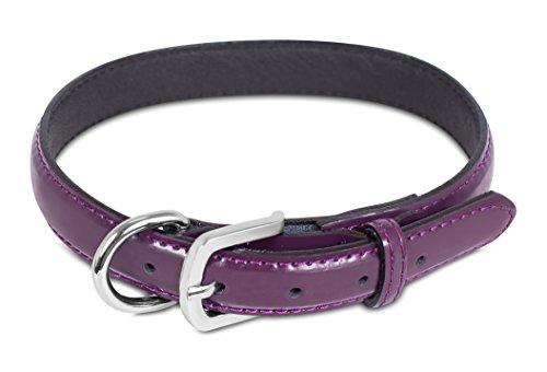 - Internet's Best Patent Leather Dog Collar | Medium | 13.5 - 17 Inch | Purple | Pet Collar