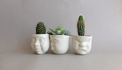 White porcelain funny face indoor pot planters set of 3 for small succulents and cacti by SinD studio