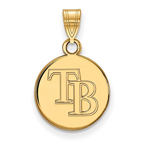 Roy Rose Jewelry 14K Yellow Gold MLB LogoArt Tampa Bay Rays Small Disc ()