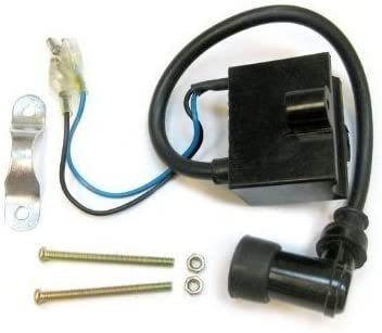 Ignition Coil CDI for 50cc 60cc 80cc 2-Stroke Motorized Bicycles