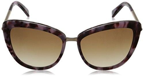 9f766ad8a4eb1 kate spade new york Women s Kandi Cat-Eye Sunglasses - Import It All