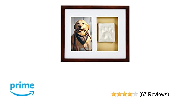 Amazon.com : Pearhead Dog Or Cat Paw Prints Pet Wall Frame With Clay ...
