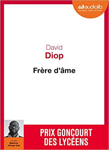 Frere D Ame Livre Audio 1 Cd Mp3 Diop David