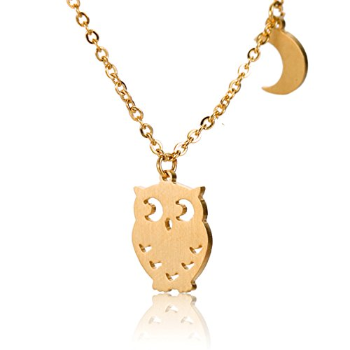 (HUAN XUN Owl Necklace with Moon Charm - Stainless Steel Jewelry Gift)