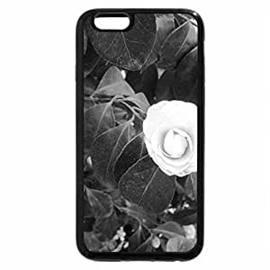 iPhone 6S / iPhone 6 Case (Black) Conservatory of flowers in Edmonton 36