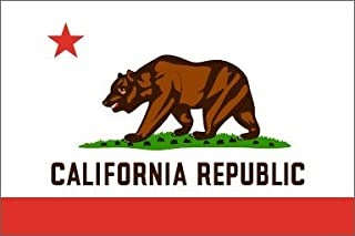 product image for Valley Forge California Flag 4 x 6 Feet Nylon - Outdoor