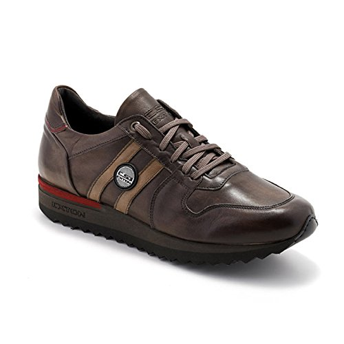Sneaker Uomo Bassa Enna Marrone 555 - Exton