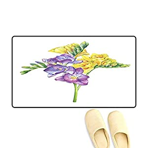 Door Mats for Inside Bouquet of Branches Violet an Yellow Freesia Flowers wi Buds Perennial Plant Freesia Serrada Floral Botanical Picture Ha 113