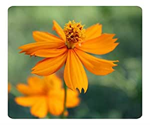 Decorative Mouse Pad Art Print Landscape and Plants Orange Flower 13 by runtopwell