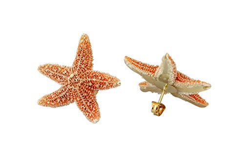 Used, Real Starfish Earrings for sale  Delivered anywhere in USA