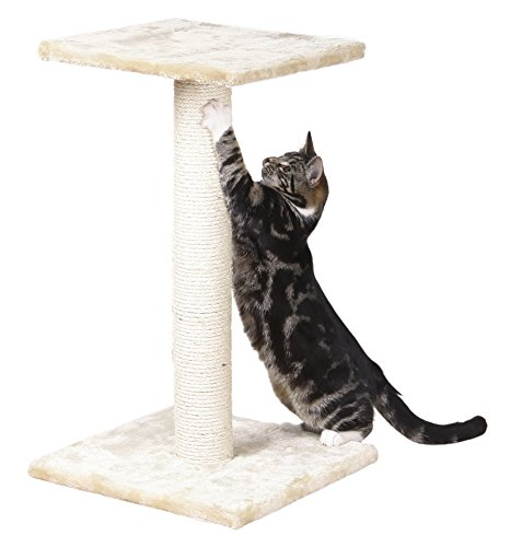 TRIXIE Pet Products Espejo Scratching (Post Perch)