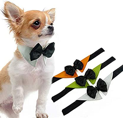 Corbata de Lazo para Perros, Mascotas Formales Corbata de Lazo ...